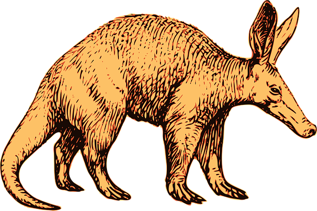 Yellowish-brown aardvark design