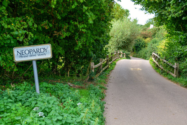 Country lane and bridge Neopardy Devon